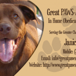 Great-PAWSabilities-front_3_11